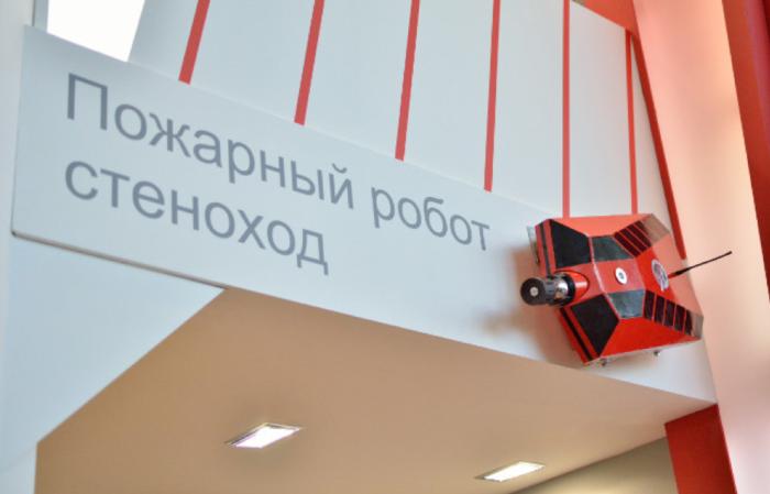 Робот-стеноход